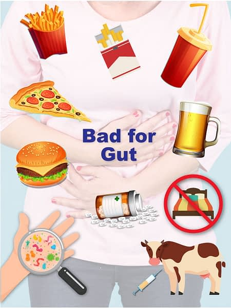 A picture of food that is bad for the health of the gut