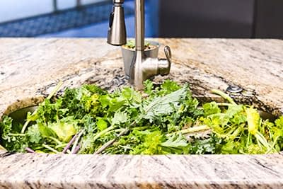 mixed greens in sink to be rinsed
