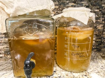 Two jars full of Kombucha drink