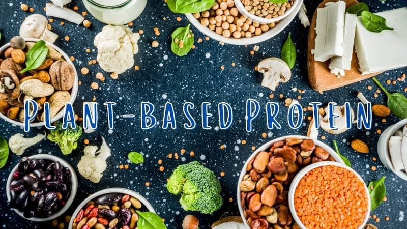 Plant-based protein sources header image